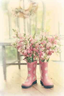 Centro Margaritas, Arreglos Florales, Envío de Flores a Domicilio, Floristería Online, Centros de Flores Frescas, Comprar Flores Online