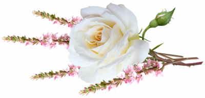 floristería online, floristeria vitoria, enviar centros de flores para nacimiento, enviar flores, envío de flores a domicilio