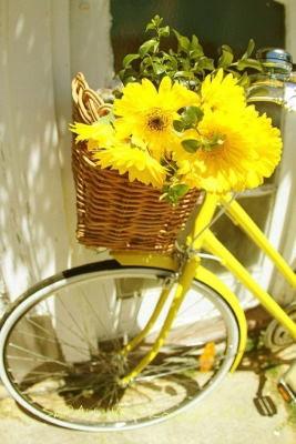 Centro Flores Rojo, Enviar Flores a Barcelona, Floristería Online, Arte Floral, Envío de Flores Urgente, Floristería Bausa Flor en Barcelona