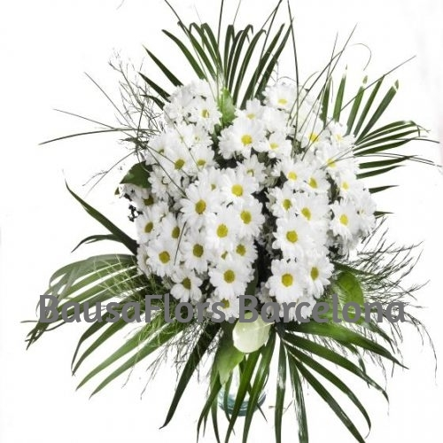 flores amrgaritas