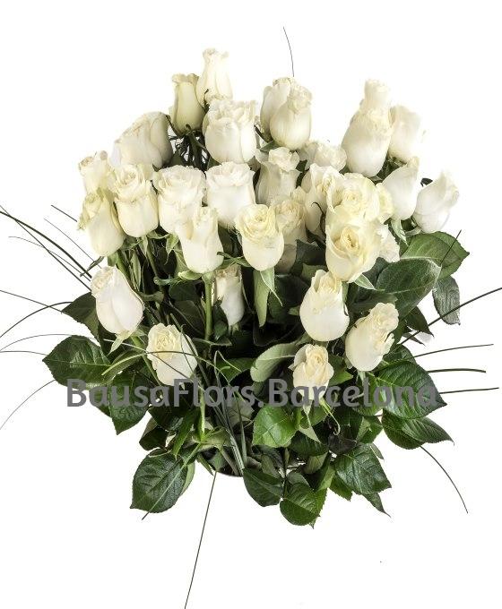 rosas bancas